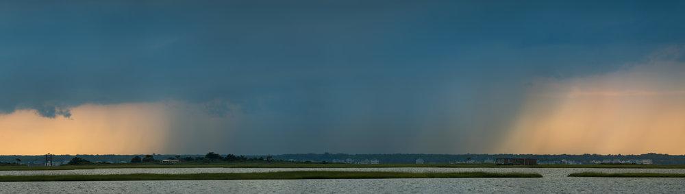 038_jersey_shorebirds.jpg