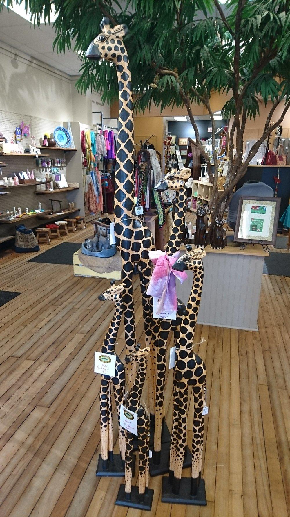 Sproule's Emporium Giraffe Family Picture 18.JPG