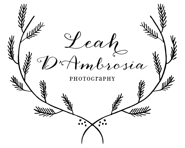 LEAH D'AMBROSIA PHOTOGRAPHY