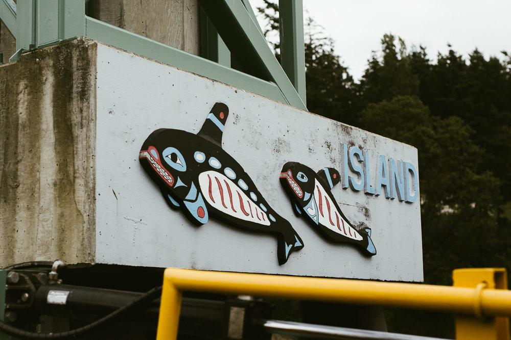 Orcas_blog-8.jpg