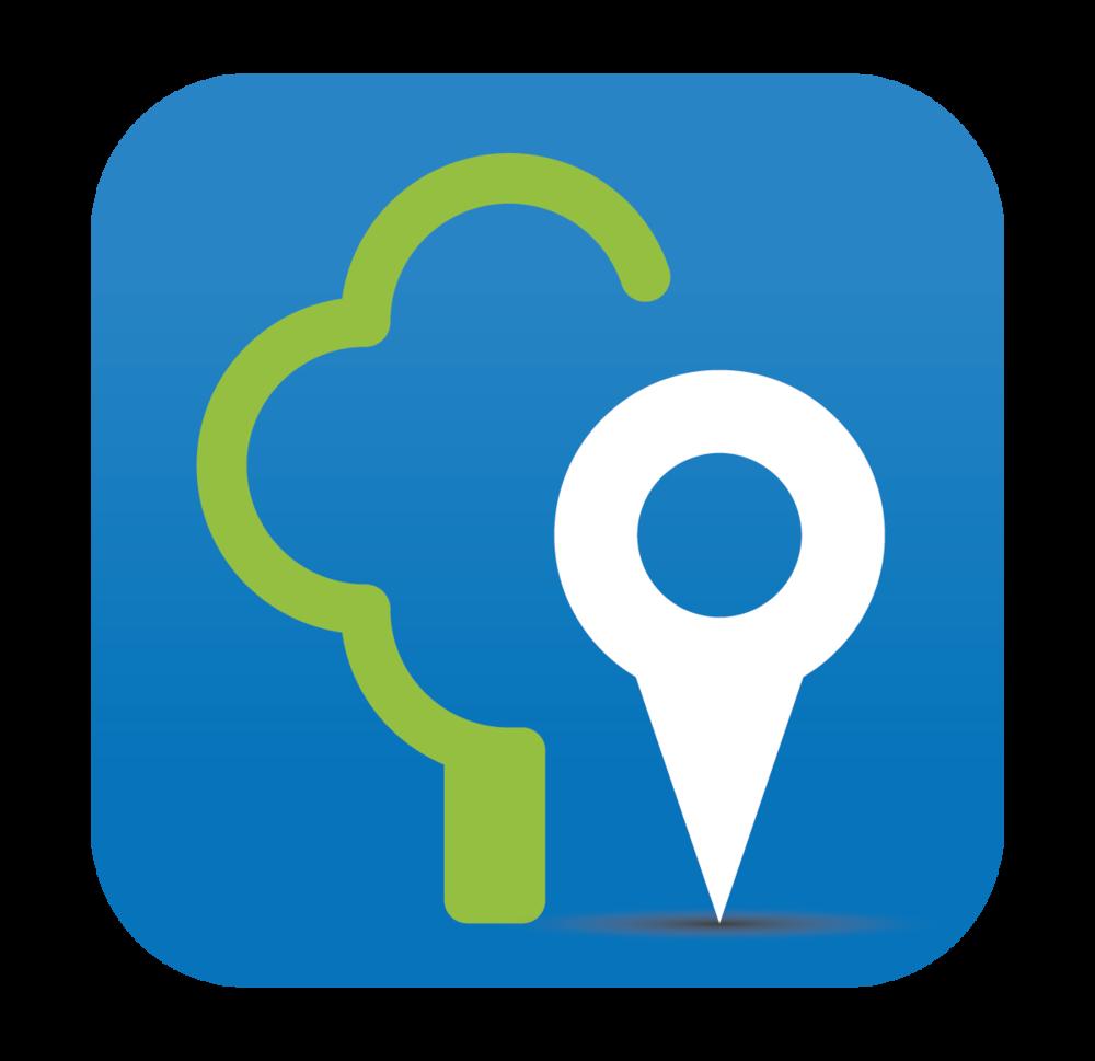 NashVitality-logo.png
