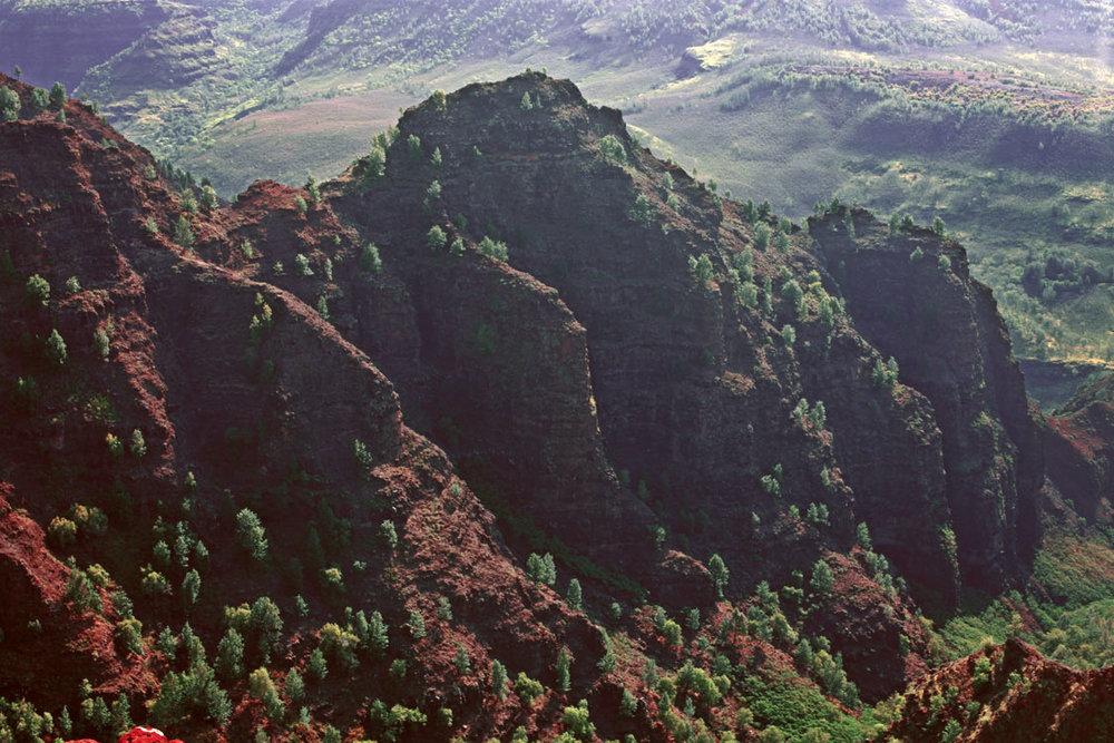 Waimea-Canyon-Trail.jpg