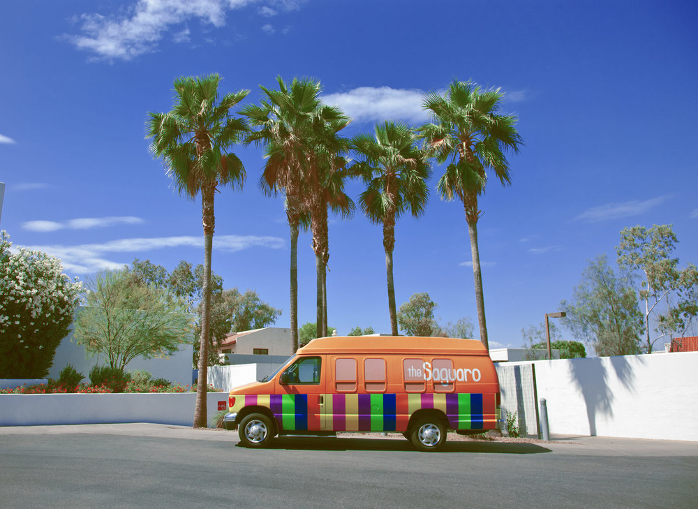 palm-trees-arizona.jpg