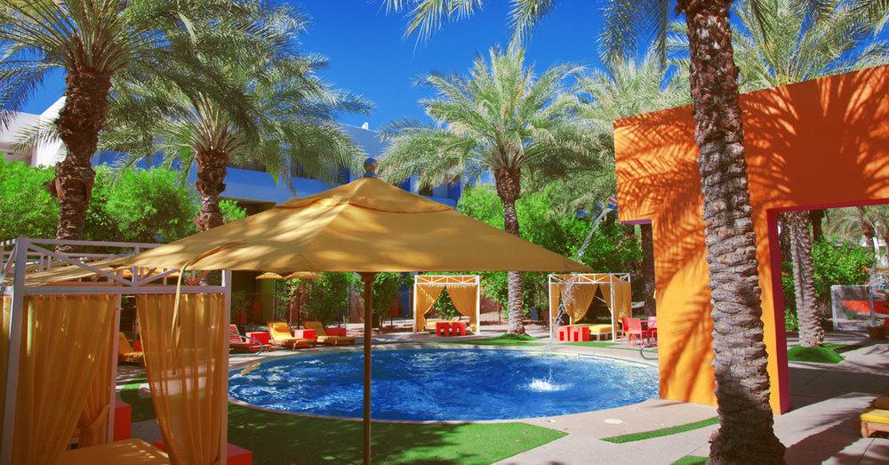 Saguaro_calma-pool.jpg