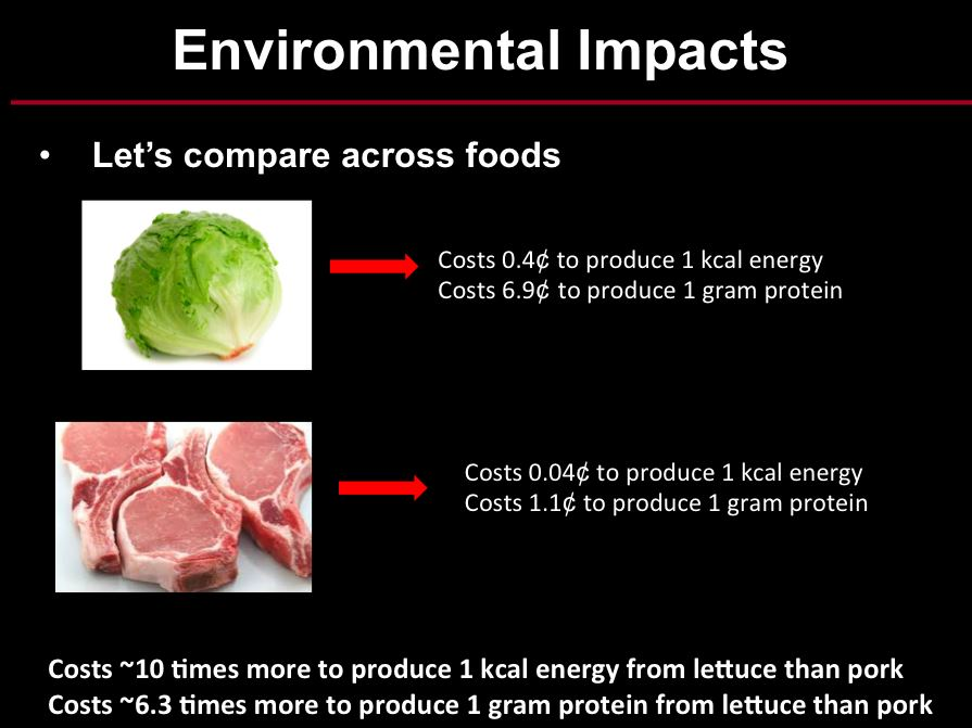 Cost Of Calories And Protein From Meat Jayson Lusk