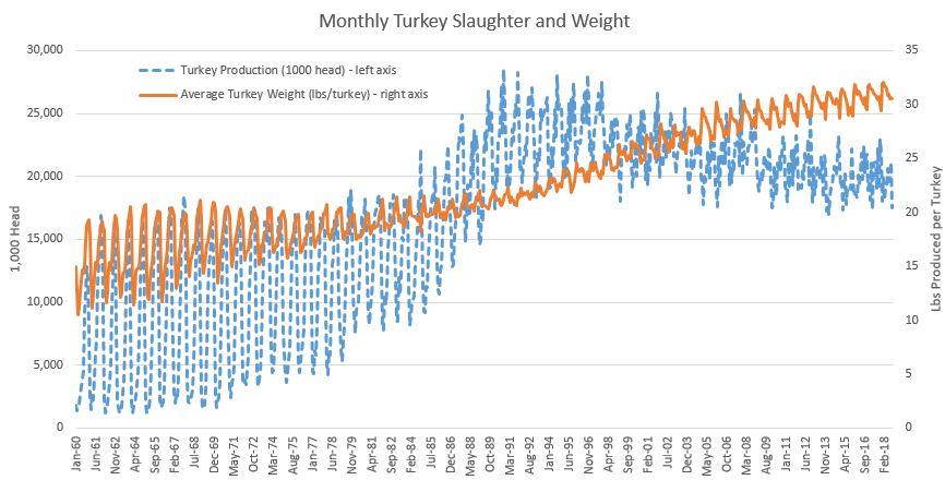 turkeyproduction2.JPG