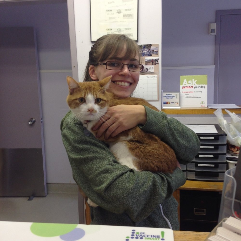 Nikki Akraboff, Veterinary Assistant I grew up in the Sunset and have been bringing my pets to Sunset Vet for nearly 20 years. I currently live with my dog, Walter and my cat, Joey (pictured). I have a degree in mechanical engineering from MIT and have worked as an actress throughout the Bay Area.  I am currently completing my prerequisites for vet school. I started at SVH as a receptionist and am excited to be getting more hands on experience working as a veterinary assistant.