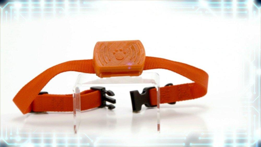 101-product-collarator-1024x576.jpg