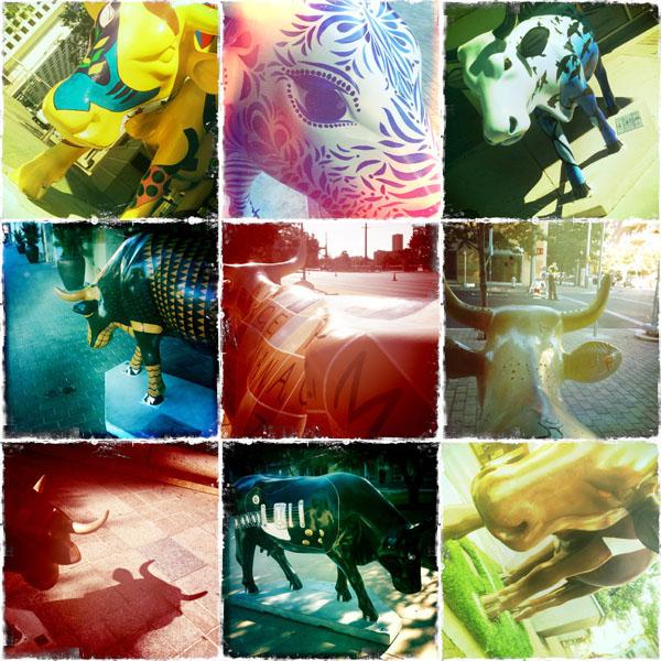 collage_austin.jpg