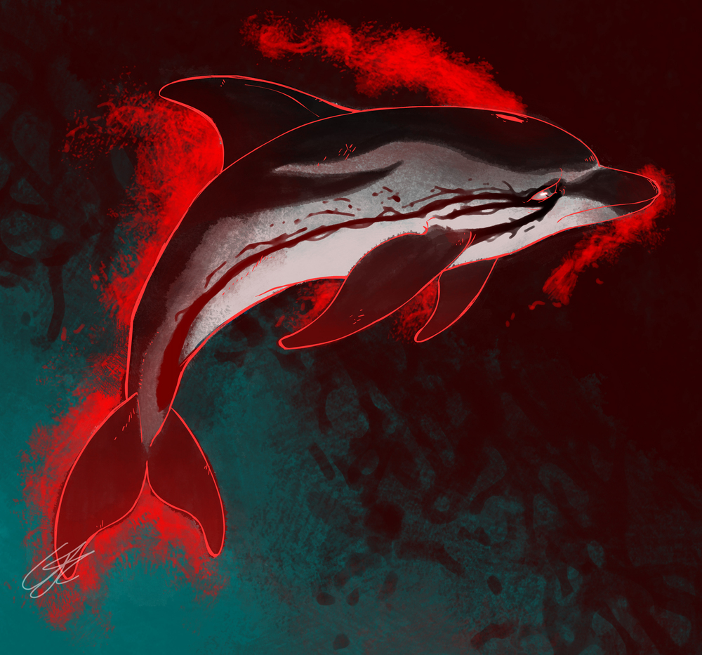 dolphinsnew.jpg