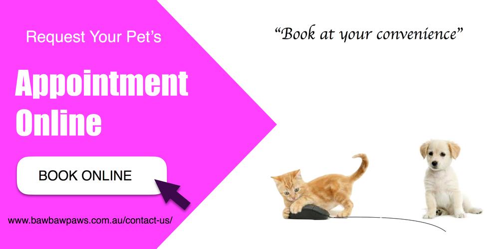 Book Omline.jpg