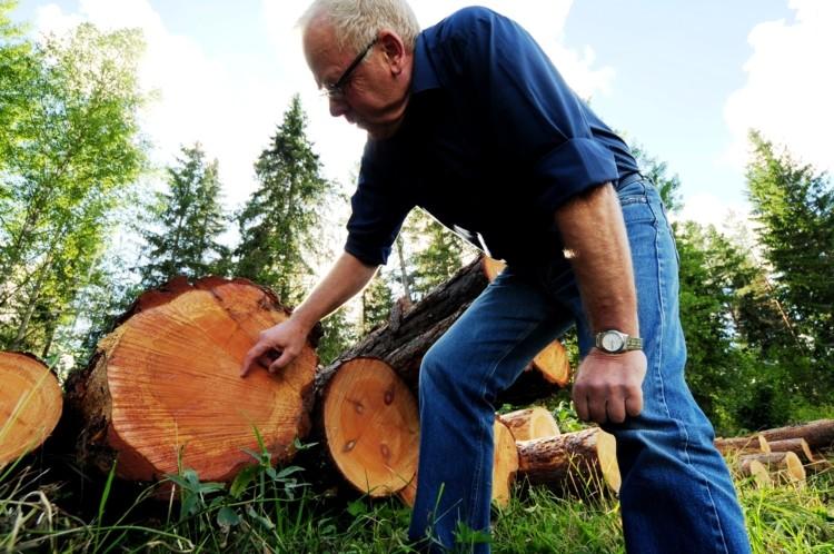 FSC Wood.jpg