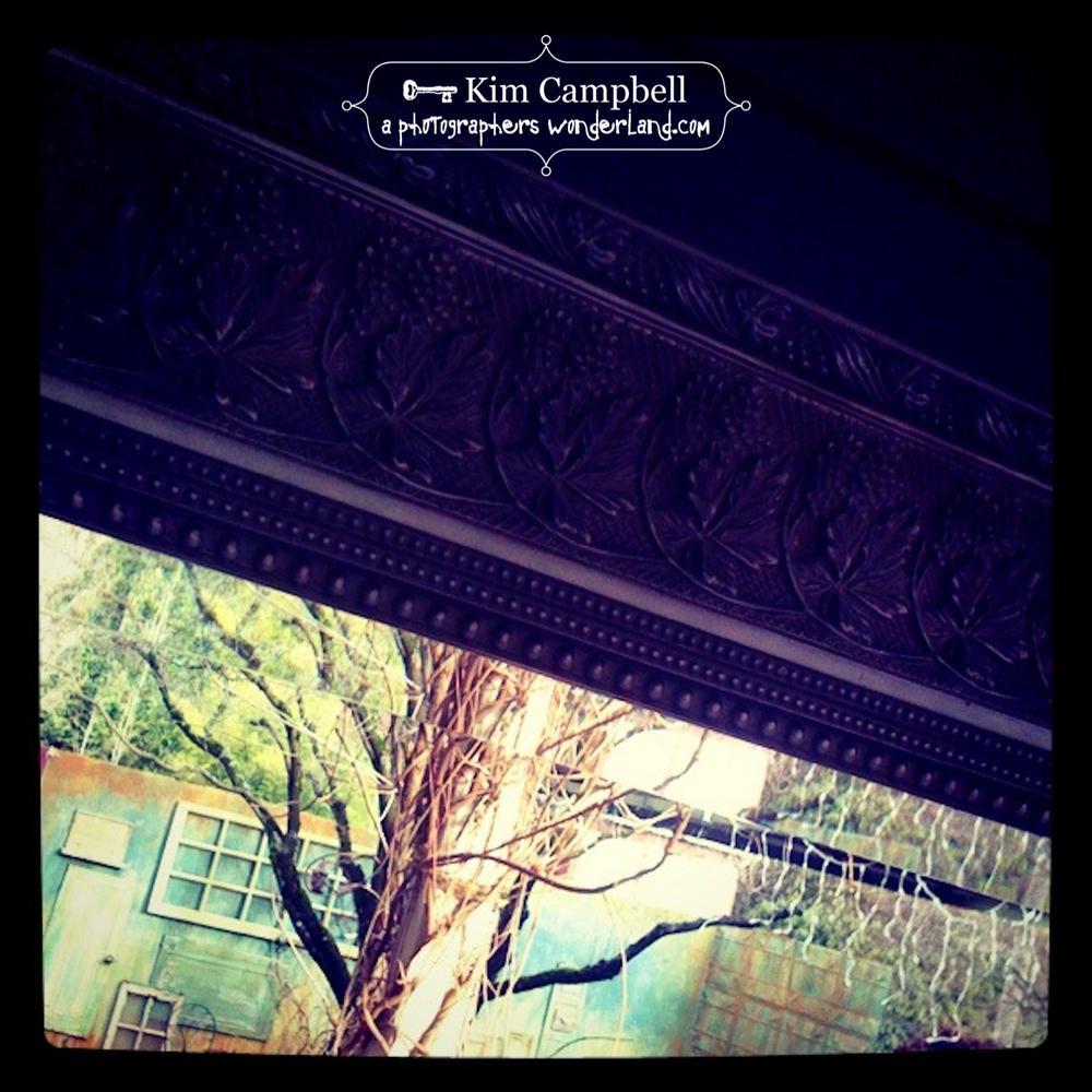 campbell_kim_IMG_0506-1.jpg
