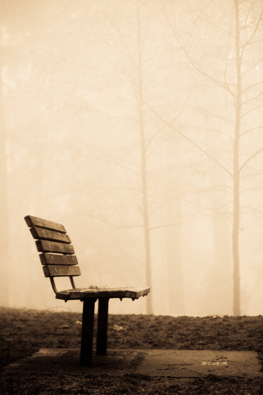 kim-campbell_photographer_lone-fog_-7.jpg