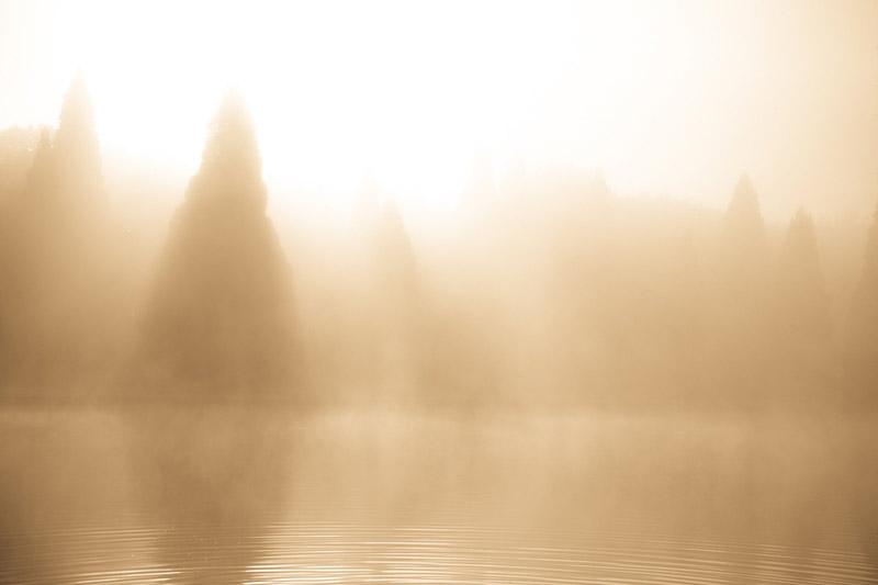 kim-campbell_photographer_lone-fog_0126.jpg