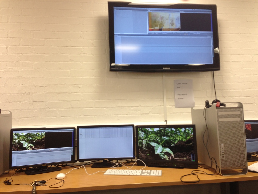 Our edit suite, the more screens the merrier!