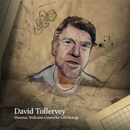 Wellcome Trust_David+Tollervey.png