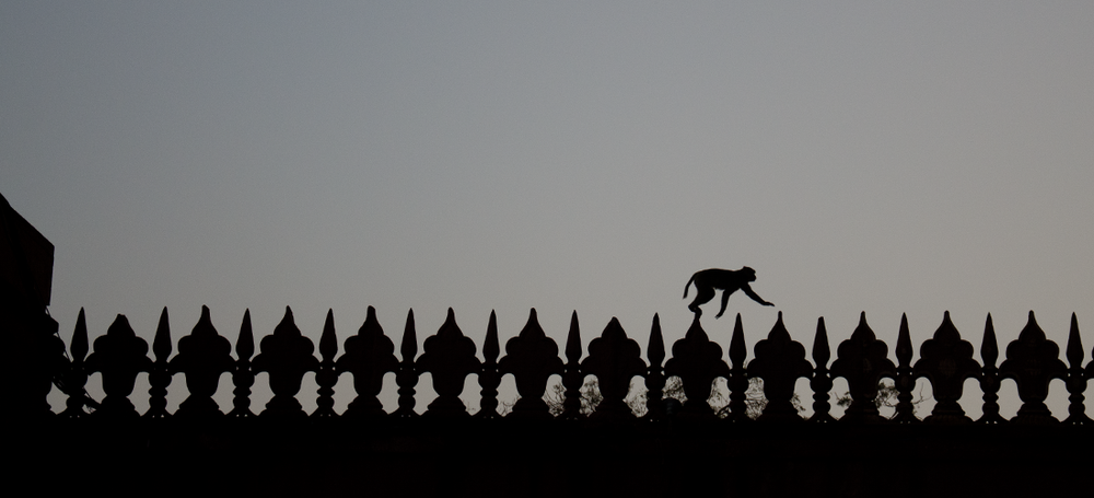 india_documentary_photography9.png