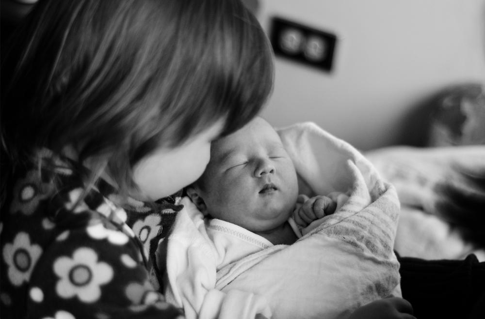 newbornportraits_chicago7.png