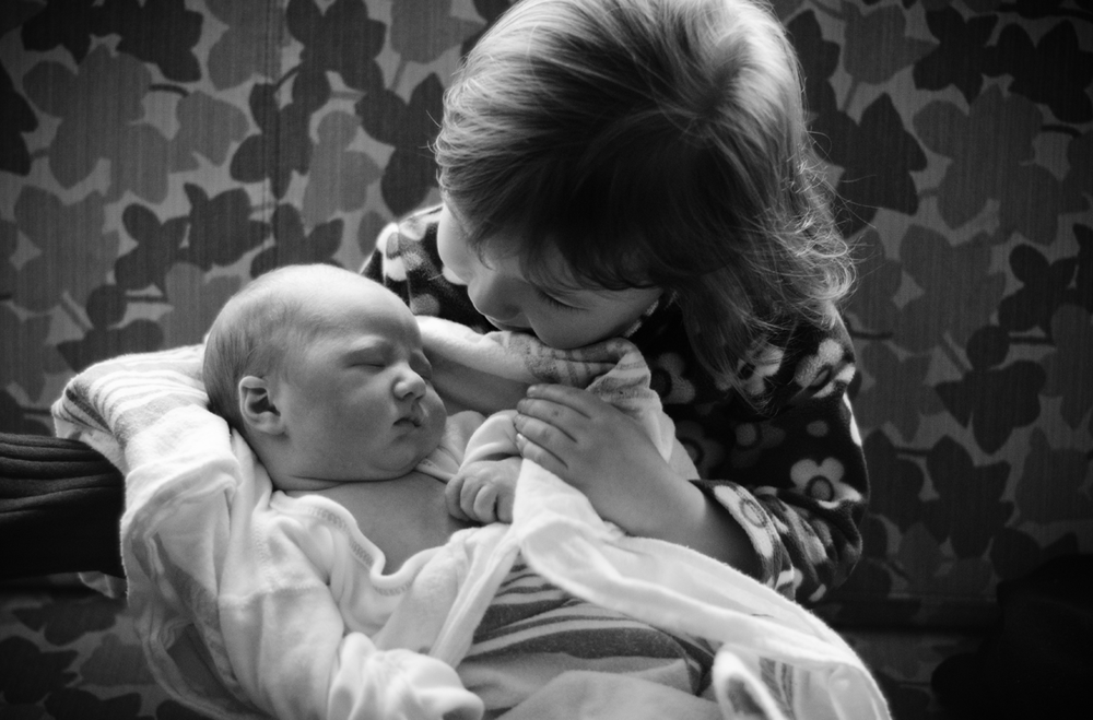 newbornportraits_chicago4.png