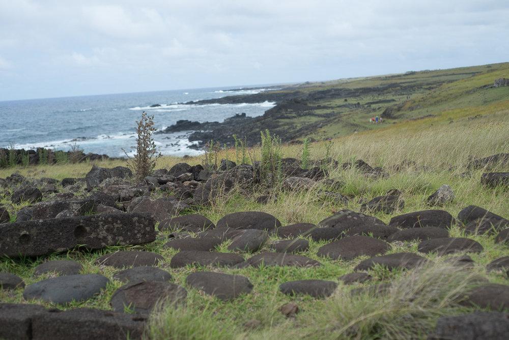 Pamela Yasuko - Oahu  Chicago Travel Photographer Rapa Nui Easter Island Chile-12.jpg