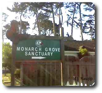 In a residential section of Pacific Grove California, a small sign directs visitors to the Monarch Sanctuary.