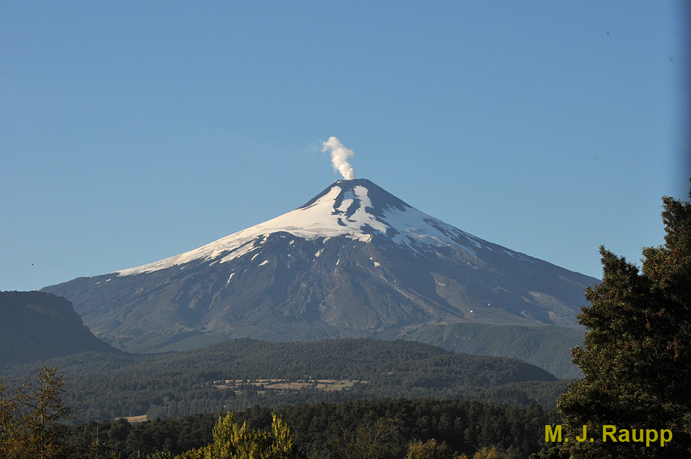 The chinchemolle lives on the slopes of the Villarrica vulcano in Chile.