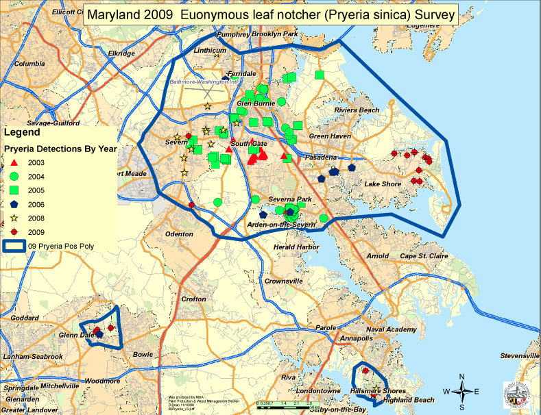 Distribution of the euonymus leaf notcher in Maryland. Image: Dick Bean, MDA
