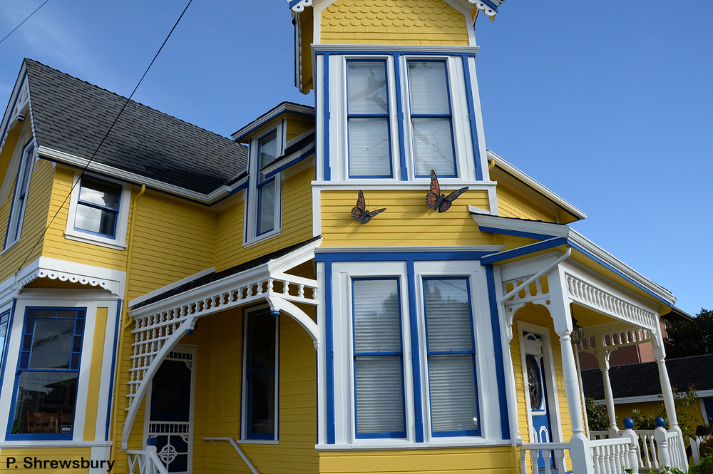 Homeowners in Pacific Grove, CA, celebrate the historic presence of monarchs in their town.