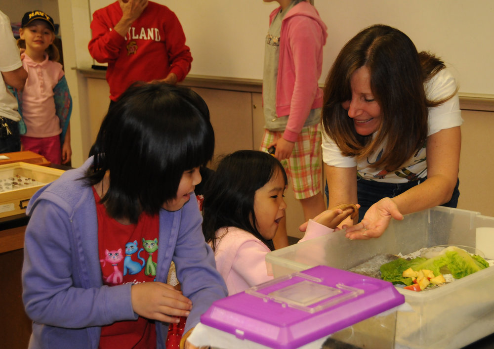 Children of all ages will have a great time at the Maryland Day Insect Petting Zoo.