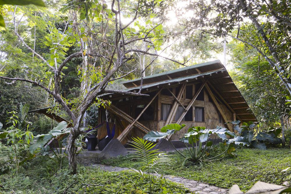 Bamboo Cabin, Villa Carmen Biological Station, Pilcopata, Peru