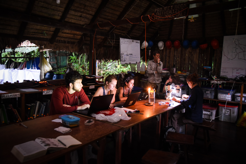 Night monkey researchers work on data analysis by candlelight at Manu Learning Centre.