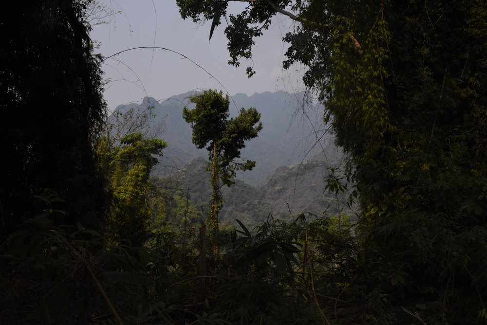 SuarezJessica_ConservationPortfolio2825.JPG
