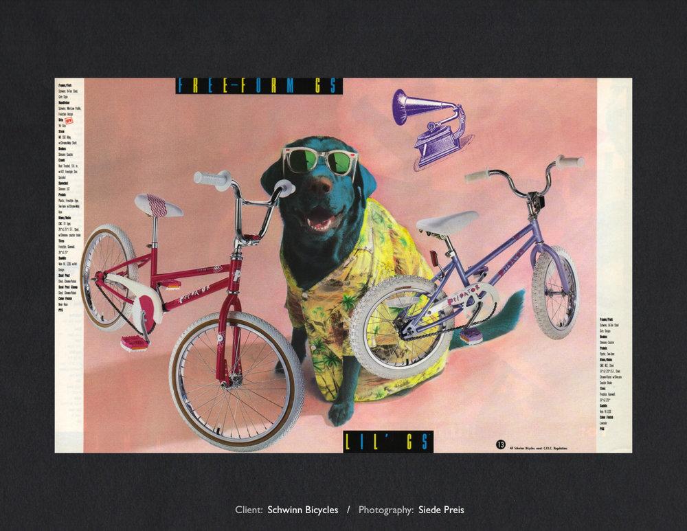 Siede-Preis-PhotographySchwinn Dog.jpg