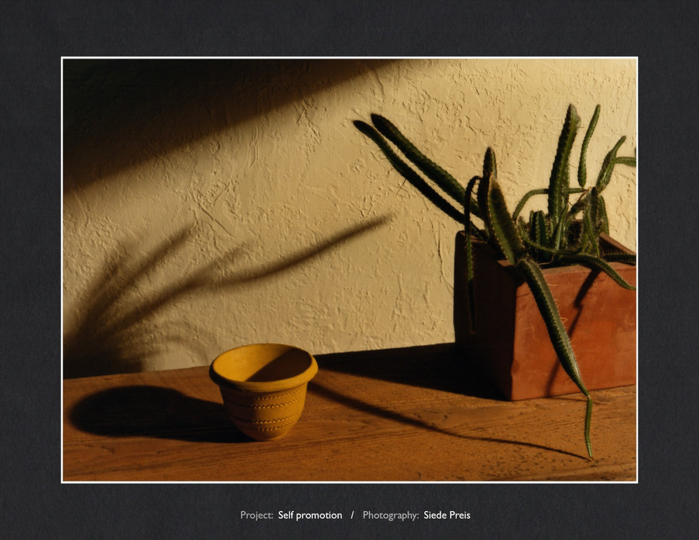 Siede-Preis-PhotographySouthwest Still Life.jpg