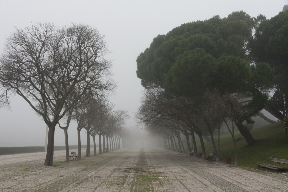 Lisbon 04