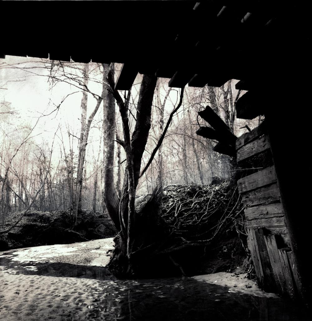 014_into_the_mist-66-3.jpg