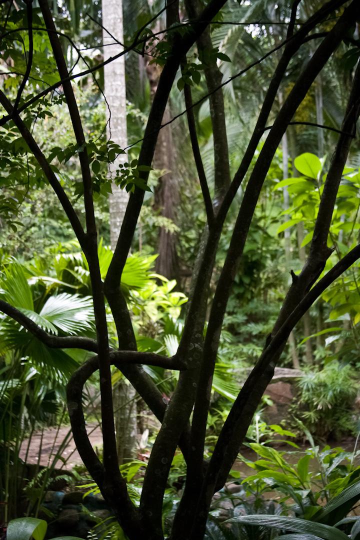 040_Costa_Rica_#1-27-Edit.jpg