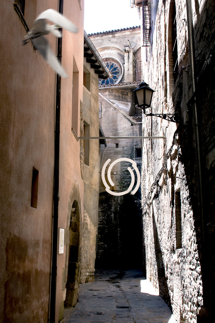 025_spain alleyway circle and bird.jpg