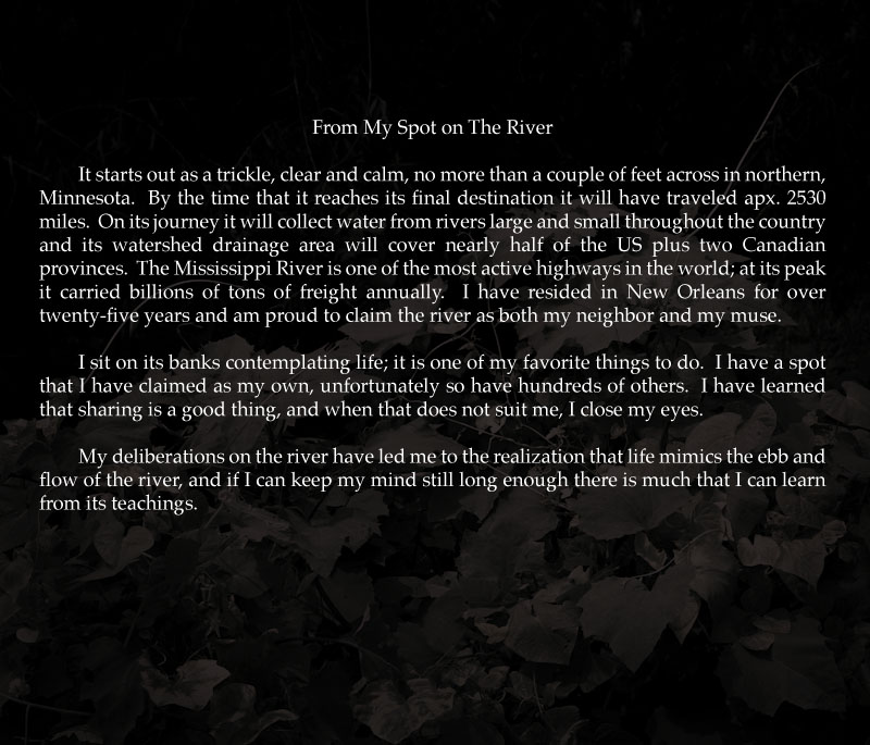 Musings on the River 01.jpg