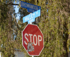 brownwood.jpg
