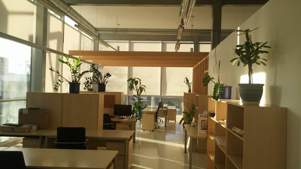 LT Office 4.jpg