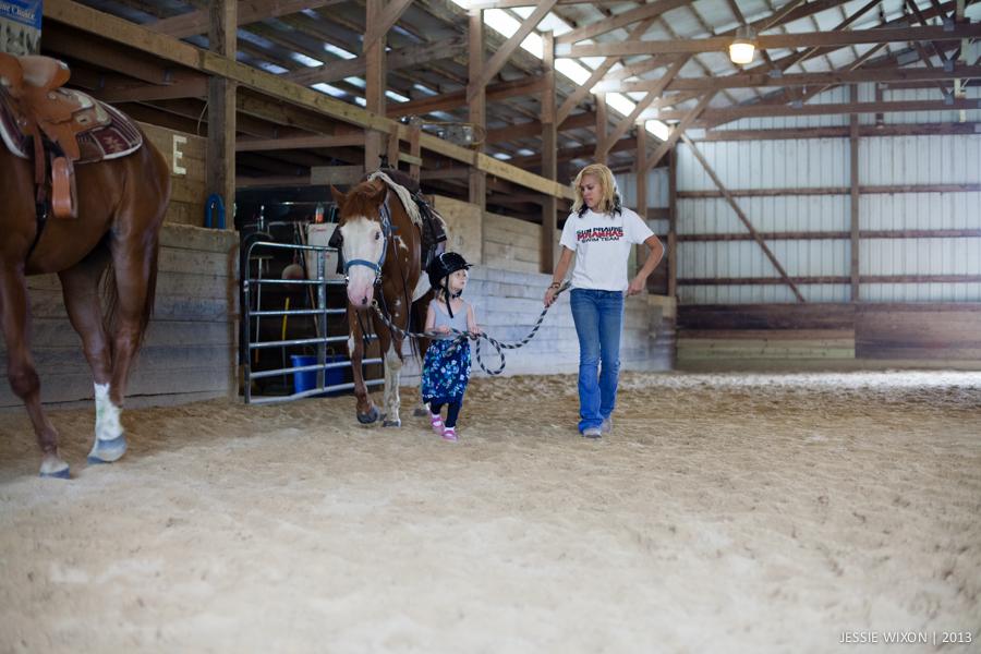 horse-12.jpg
