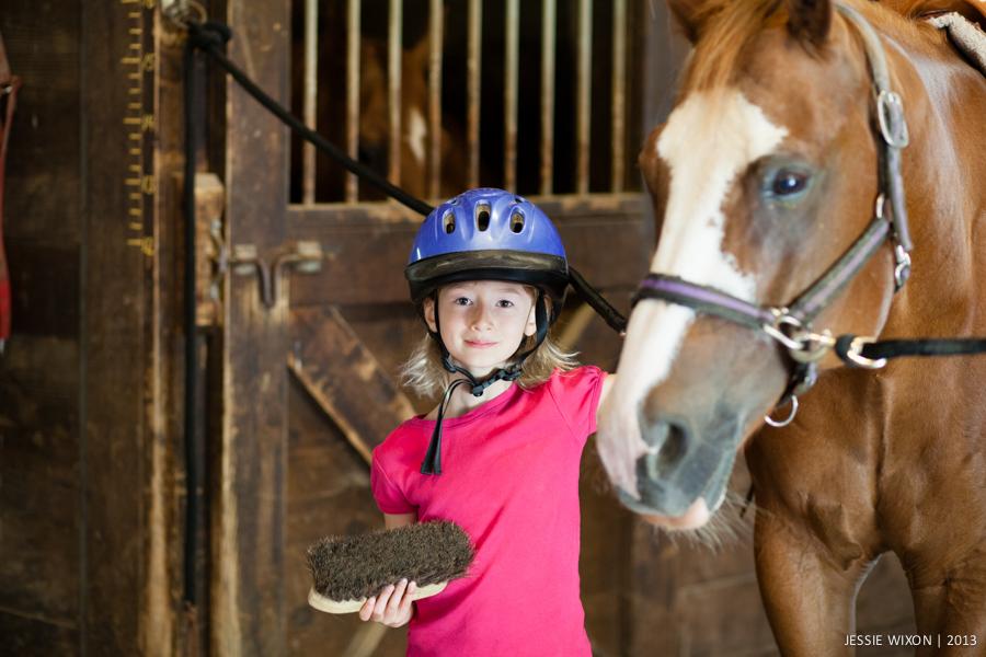 horse-15.jpg