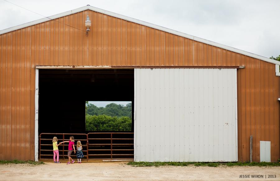 185/365  Horse farm