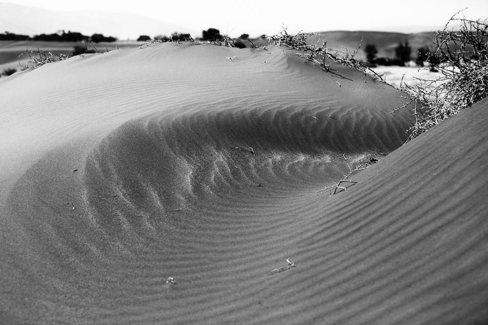 Namibia-1-15.jpg