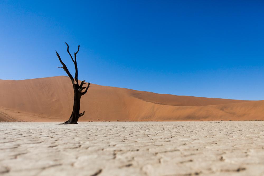 Namibia-1-12.jpg