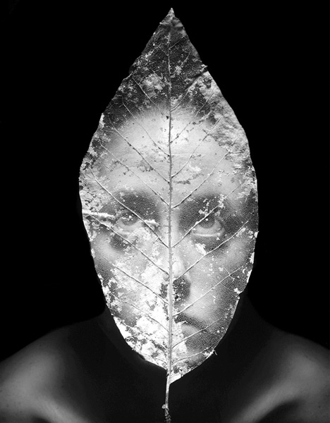 Figure/Foliage 150