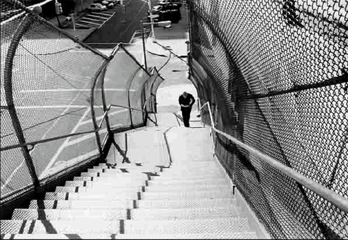 Man Climbing Stairs to the Williamsburg Bridge