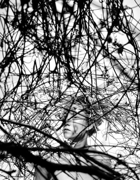 Figure/Foliage 152